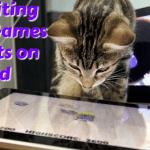 cat-apps