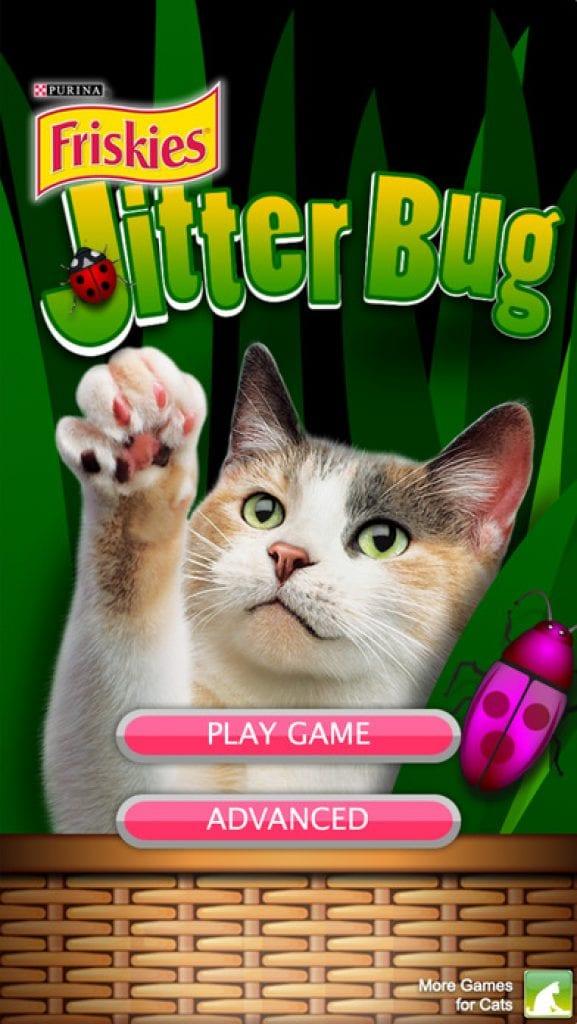 jitter cat app