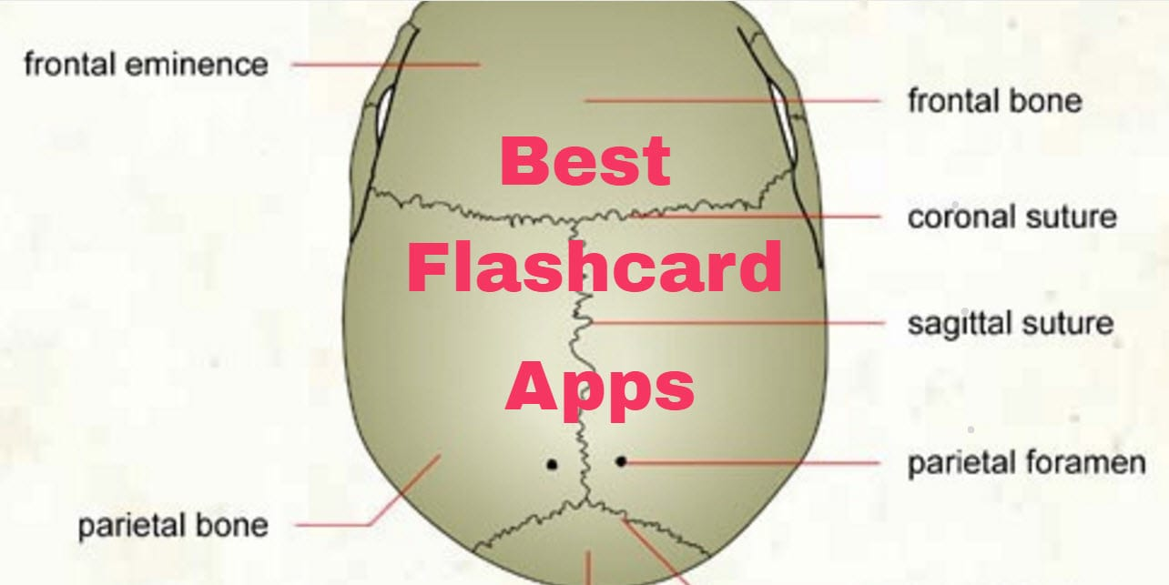 6 Best Flashcard Apps | Free apps for Android and iOS