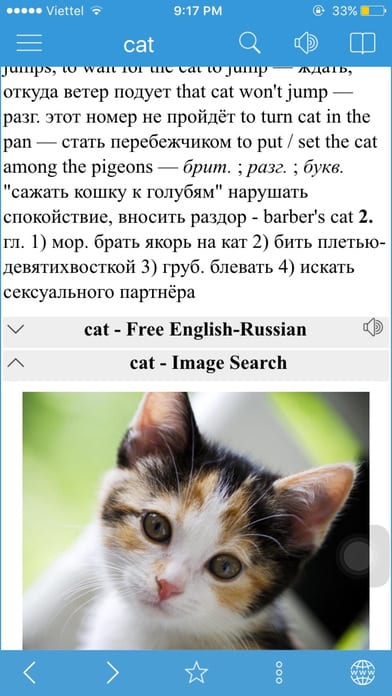 Russian English Dictionary & Thesaurus & Translator