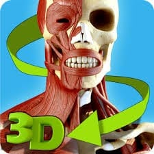 easy-anatomy-3d-learn-anatomy