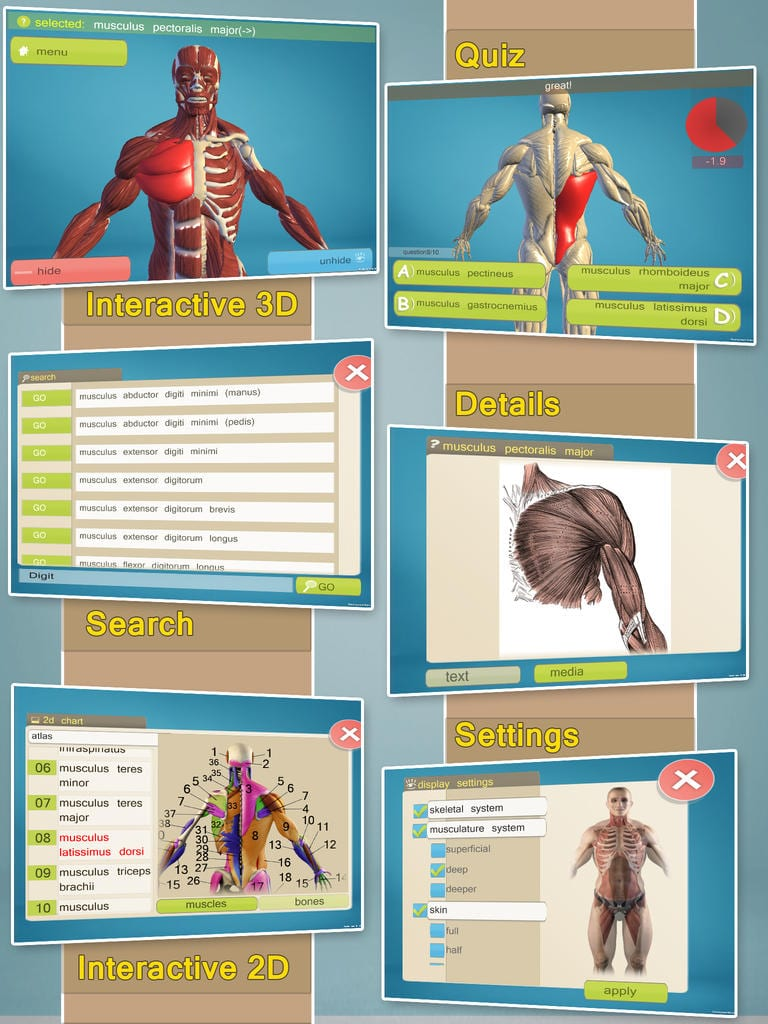 Apps for anatomy