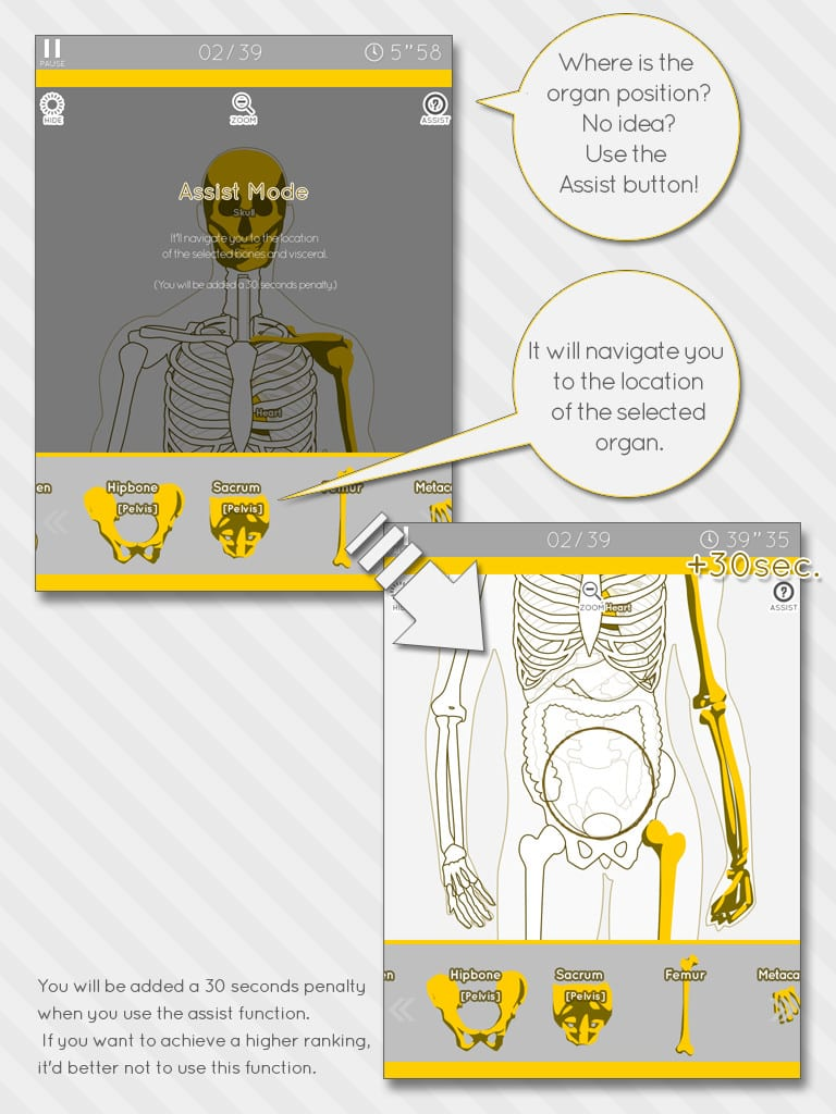 enjoy-learning-anatomy-2