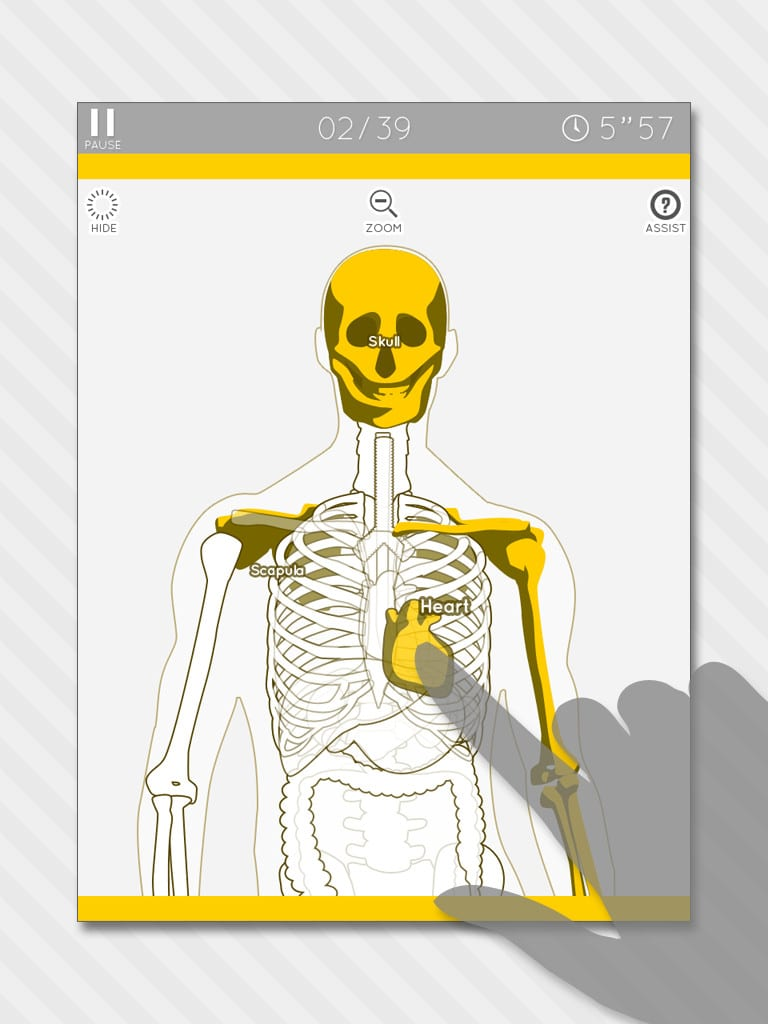 12 Best Anatomy Apps For Android Ios Free Full Body Muscle Diagram Muscles Labeled Enjoy Learning