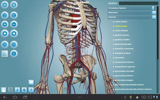 12 Best Anatomy Apps For Android Ios Free Apps For Android Ios