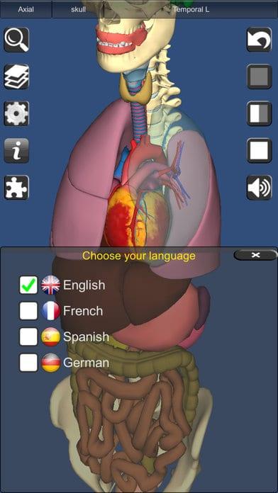 bones-and-organs-2