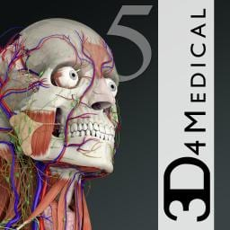 12 Best Anatomy apps for Android & IOS | Free apps for android, IOS ...