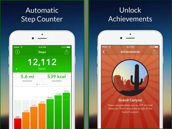 stepz screenshot