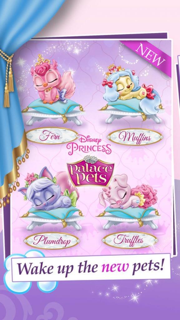 pets princess