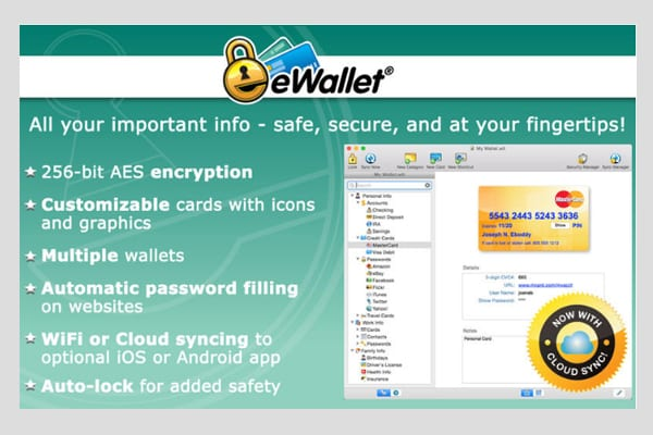 ewallet screen