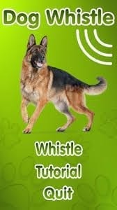 11 Dog whistle apps that actually work | Free apps for Android and iOS
