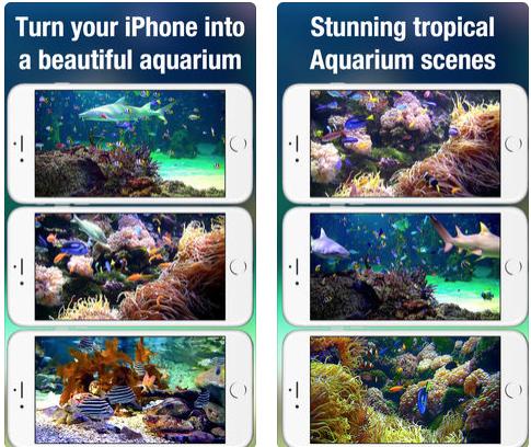 Aquarium Live HD screen