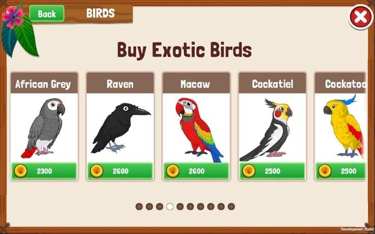 birdland screen
