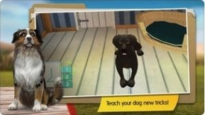 dog hotel screen1