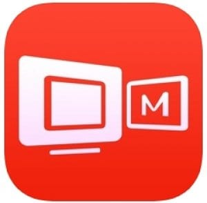 mirroring assist logo