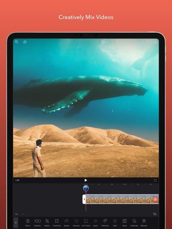 enlight-videolap-screen