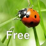 nature-free-logo