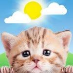 WeatherKitty