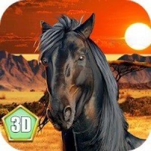 Wild African Horse