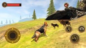Wild Dog Survival Simulator