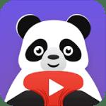 pandavideo