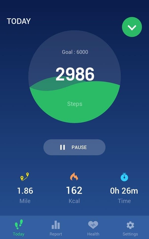Leap fitness group pedometer1