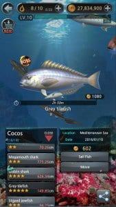 fishing hook2