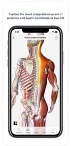 3D Human Anatomy & Disease