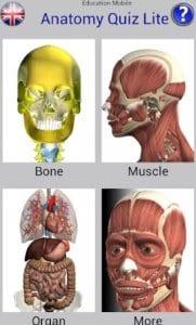 Anatomy Quiz Free