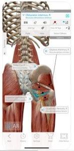 Human Anatomy Atlas 2020: Complete 3D Human Body