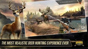 DEER HUNTER1