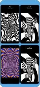 Optical Illusions Game11