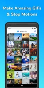 gif maker by momento1