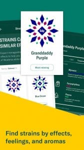 leafly2