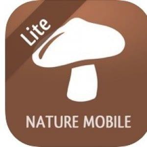 Mushroom LITE