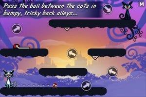 Cat Physics