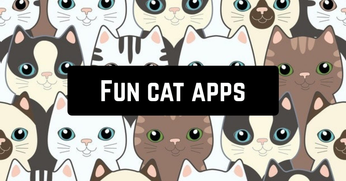 Fun cat apps