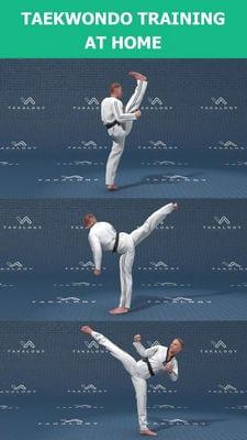 mastering taekwondo1