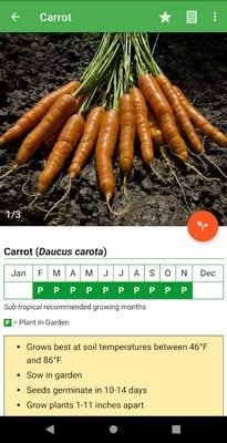 gardenate2