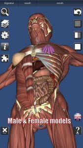 3D Bones and Organs screen 2