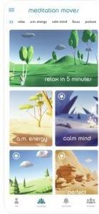 Meditation Moves 1