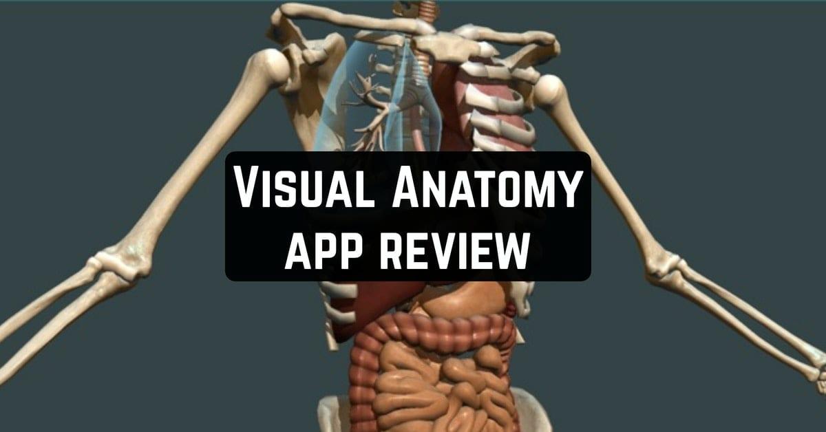 Visual Anatomy app review