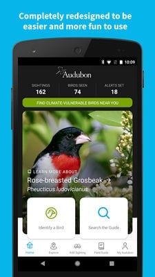 audubon1