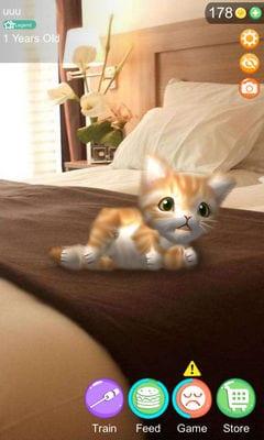 AR Cat2
