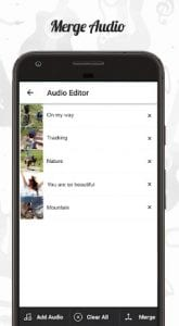 audio editor1