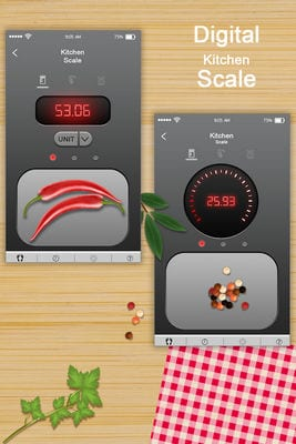digital scale simulator1