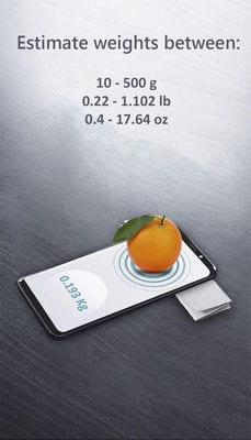 weight scale estimator1
