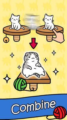 Cat Condo1