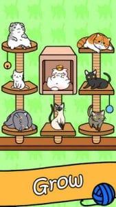 Cat Condo2