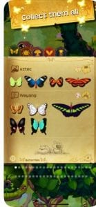 Flutter1